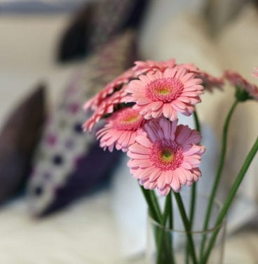 Flowers in hotel bedroom