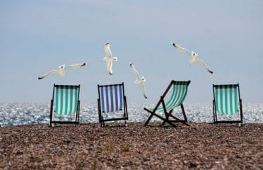 Seagulls and deckchairs on a beach