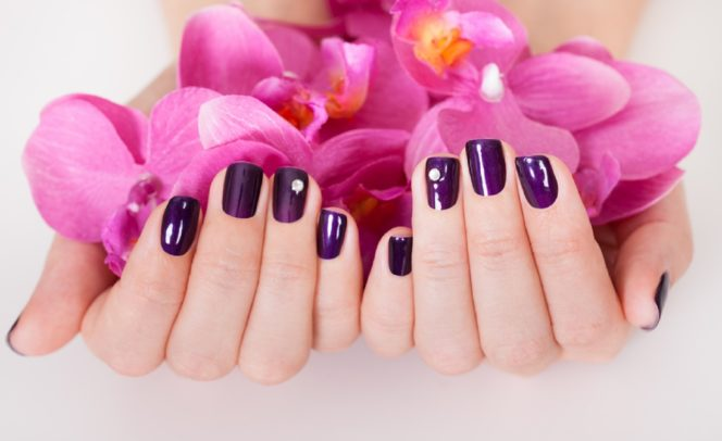 polished nails holding pink flowers