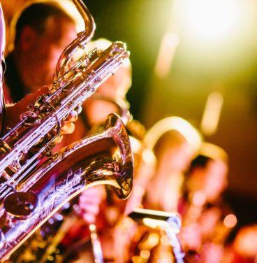 Jazz nights at Stoke by Nayland