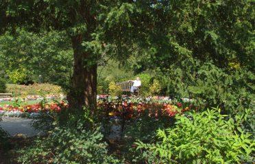 Christchurch Park Gardens - Ipswich