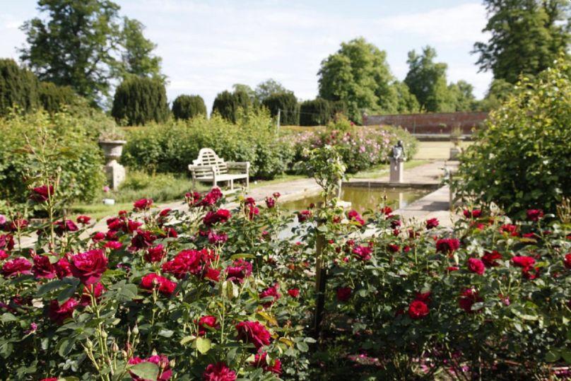Glemham Hall Gardens - Suffolk