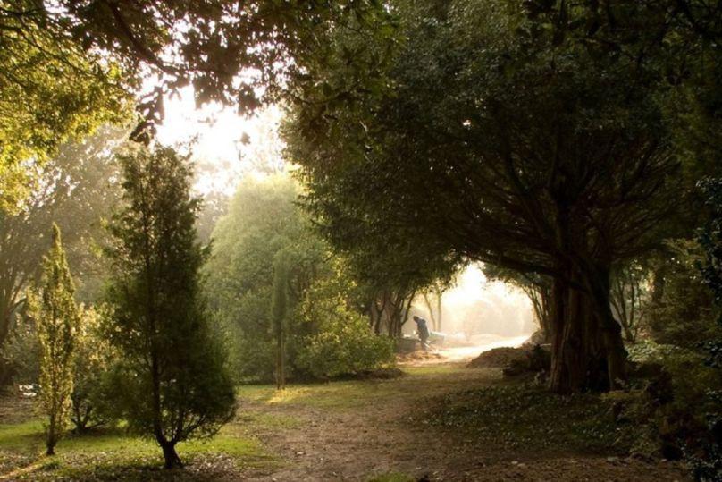 Ickworth House Gardens - Suffolk