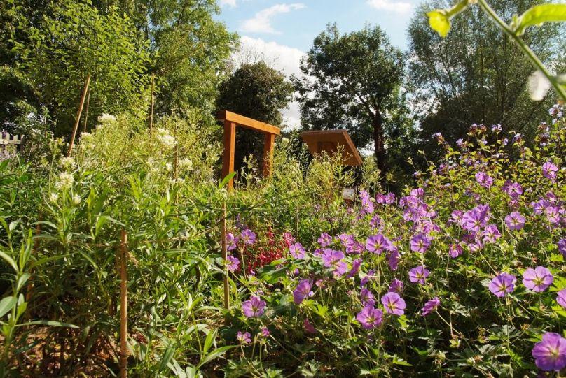 RSPB Flatford Wildlife Gardens