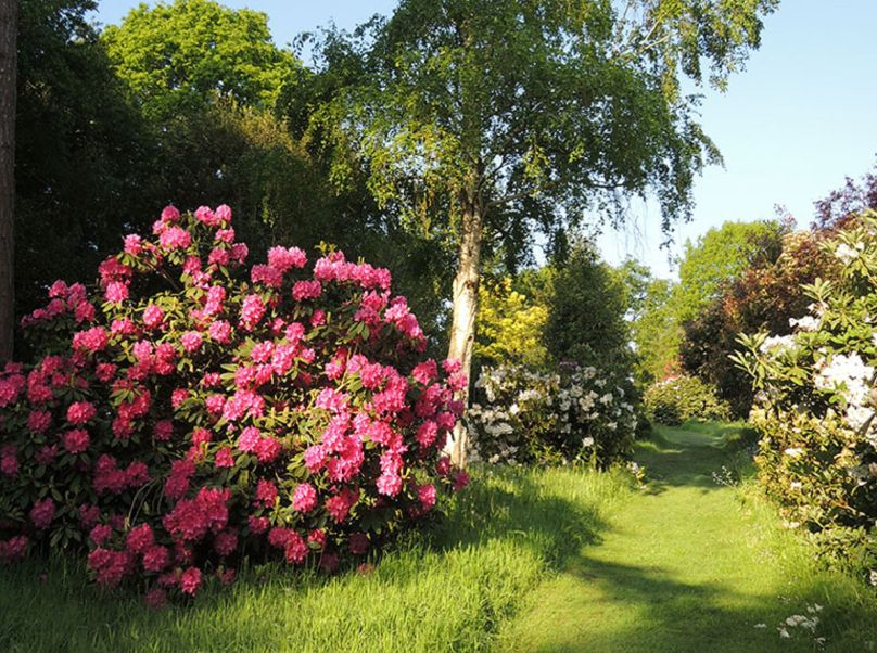 The Place For Plants - East Bergholt Gardens