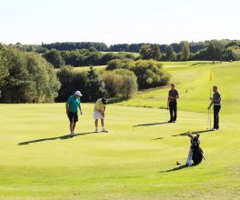 Four ball golf - Stoke by Nayland