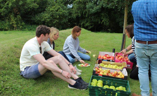 Boxford Farm fruit corporate team building