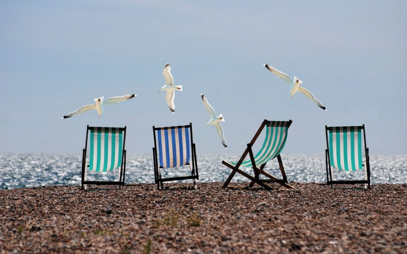 Seagulls and deckchairs on a beach