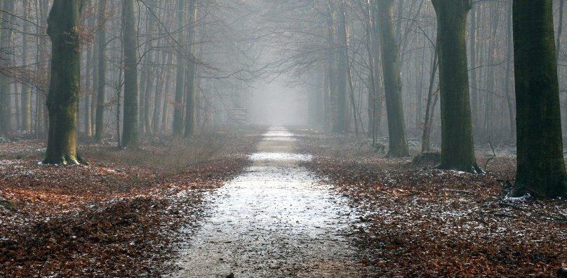 Spooky crossroads